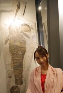 シルル紀の王者。体長2mを超えるウミサソリの化石。