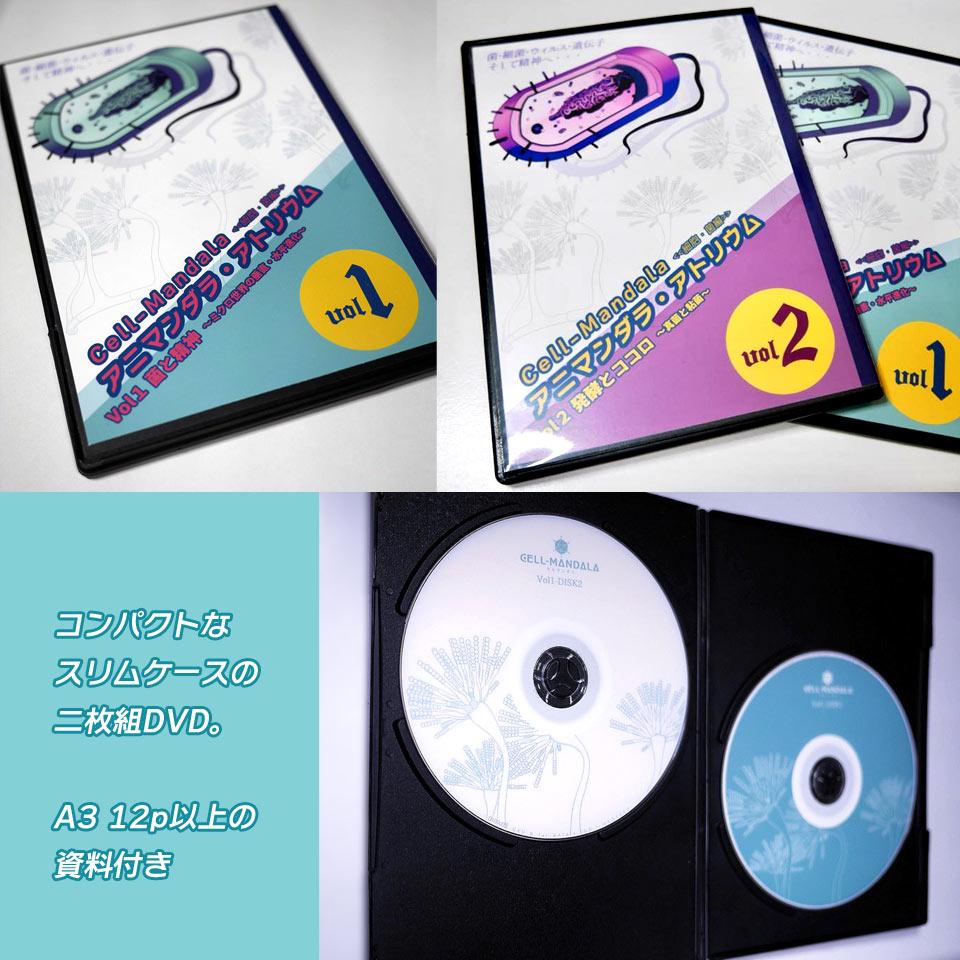 DVD販売