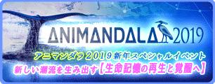 2019新年イベント