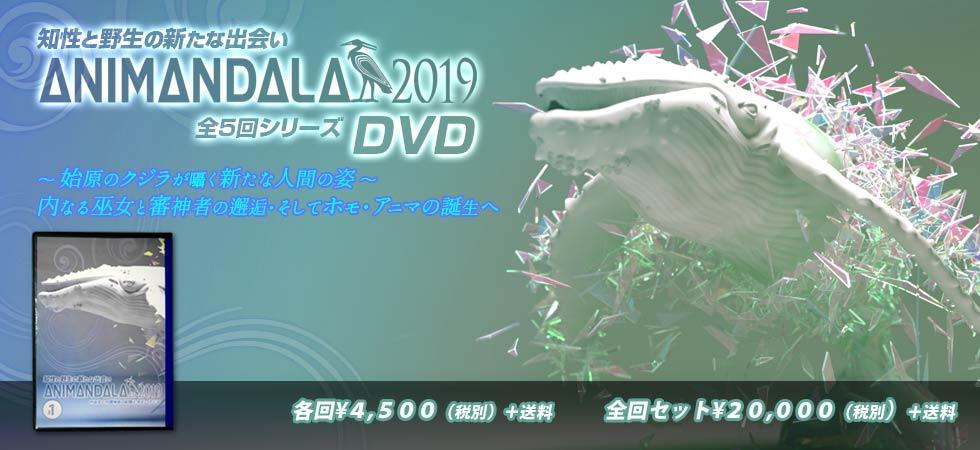 2019五回DVDタイトル