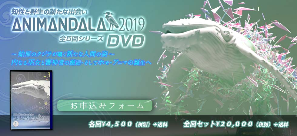 2019五回DVDタイトル申し込みフォーム2
